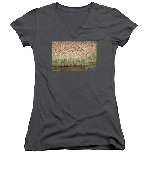 Red-winged Blackbird Women's V-Neck T-Shirt