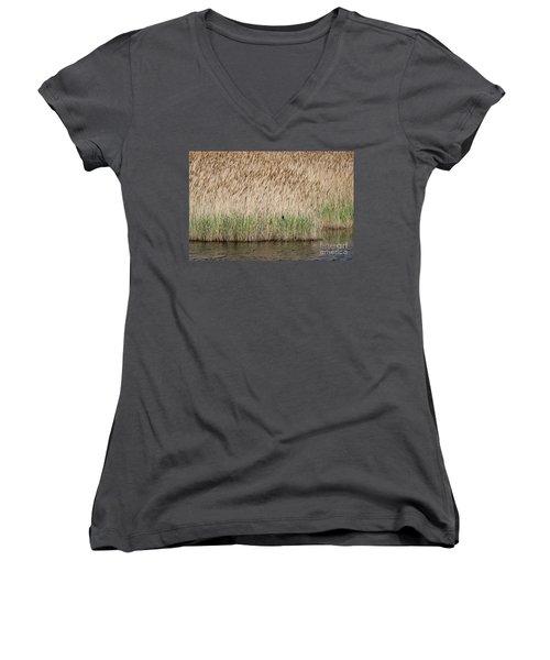 Red-winged Blackbird Women's V-Neck T-Shirt