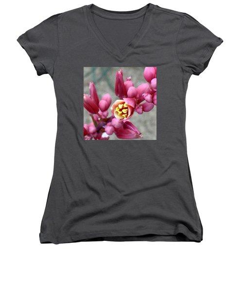 Red Yucca Macro Women's V-Neck T-Shirt
