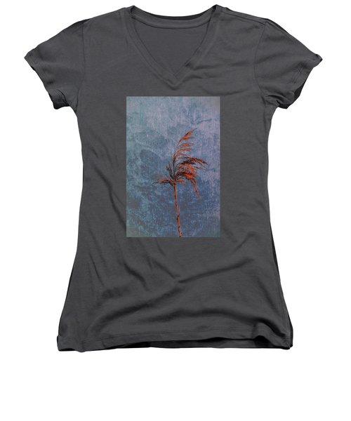 Reed #f9 Women's V-Neck T-Shirt