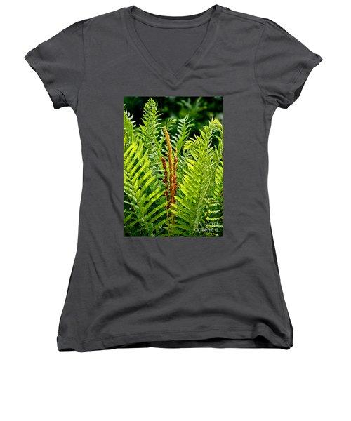 Refreshing Fern In The Woodland Garden Women's V-Neck T-Shirt (Junior Cut) by Carol F Austin