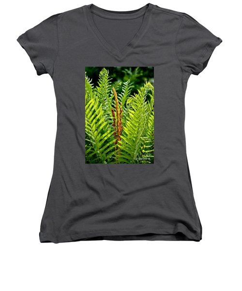 Refreshing Fern In The Woodland Garden Women's V-Neck T-Shirt