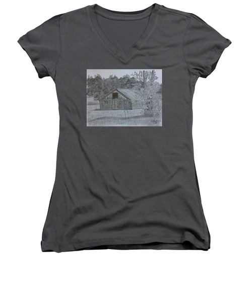 Remote Cabin Women's V-Neck T-Shirt (Junior Cut)
