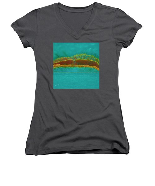 Restoration Women's V-Neck T-Shirt