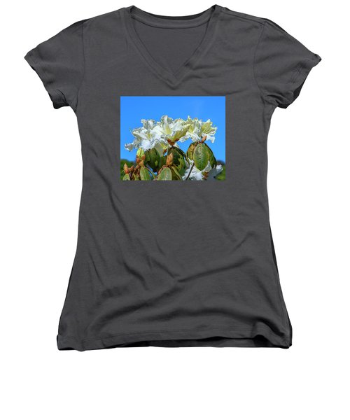 Rhododendron Ciliicalyx Dthn0213 Women's V-Neck (Athletic Fit)