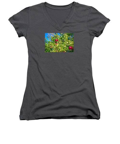 Ripe Pomegranate On The Tree In Jerusalem During Sukkoth Women's V-Neck (Athletic Fit)