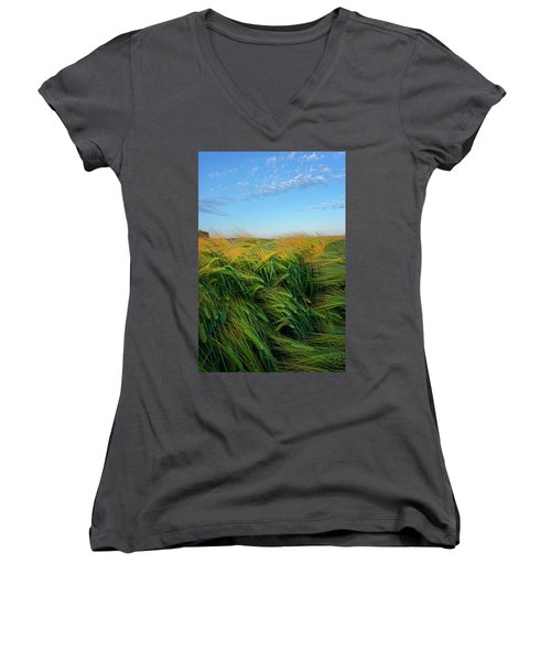 Ripening Barley Women's V-Neck (Athletic Fit)