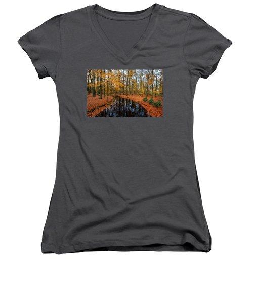 River Through Autumn Women's V-Neck