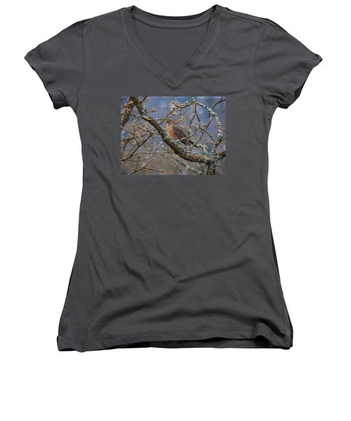 Robin In A Tree Women's V-Neck T-Shirt (Junior Cut) by Keith Boone