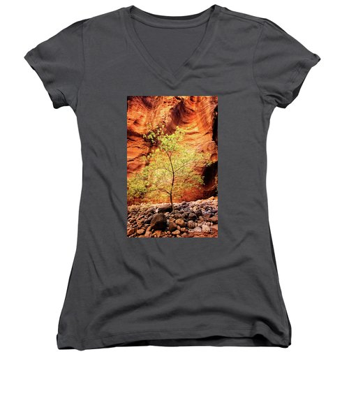 Rock Tree Women's V-Neck