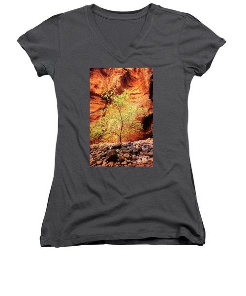 Rock Tree Women's V-Neck