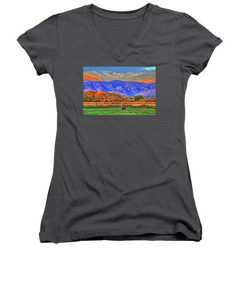 Women's V-Neck T-Shirt (Junior Cut) featuring the photograph Rocky Mountain Deer by Scott Mahon