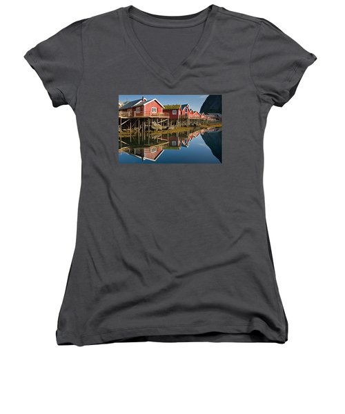 Rorbus With Reflections Women's V-Neck T-Shirt (Junior Cut) by Aivar Mikko