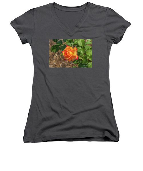 Women's V-Neck T-Shirt (Junior Cut) featuring the photograph Rosa Peace by Jim Lepard