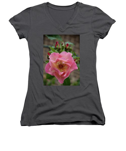 Rose And Buds Women's V-Neck (Athletic Fit)