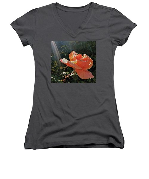 Rose And Rays Women's V-Neck T-Shirt