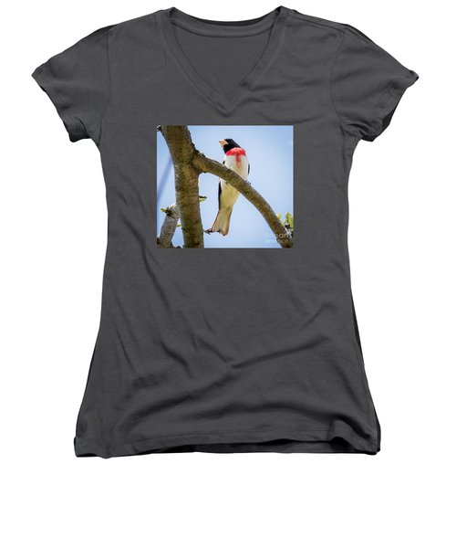 Women's V-Neck T-Shirt featuring the photograph Rose-breasted Grosbeak Looking At You by Ricky L Jones