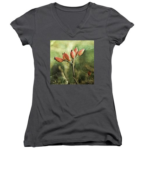 Rose Hips Women's V-Neck T-Shirt