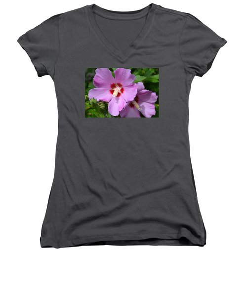 Rose Of Sharon Women's V-Neck (Athletic Fit)