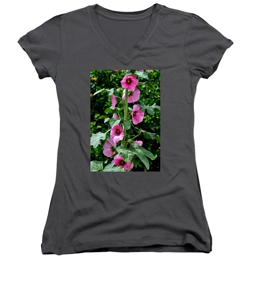 Rose Of Sharon Vine Women's V-Neck (Athletic Fit)