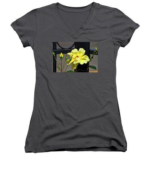 Rose On Wrought Iron Women's V-Neck (Athletic Fit)