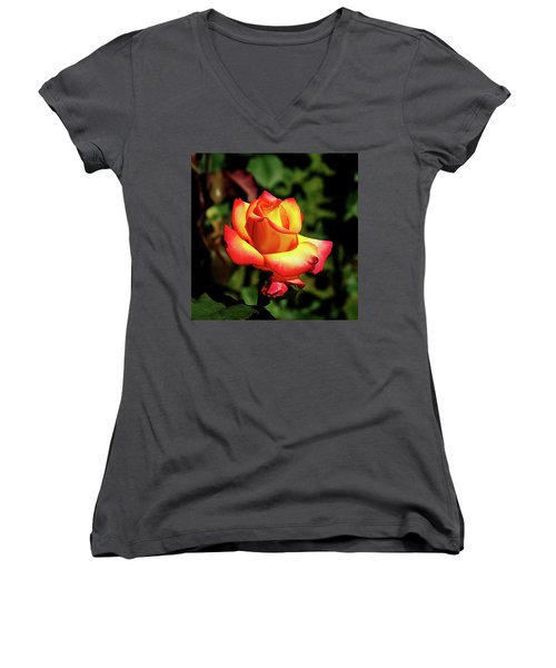 Rose To Remember Women's V-Neck T-Shirt (Junior Cut) by Dale Stillman