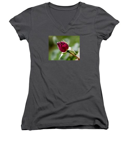 Women's V-Neck T-Shirt (Junior Cut) featuring the photograph Rosebud by Cathy Donohoue