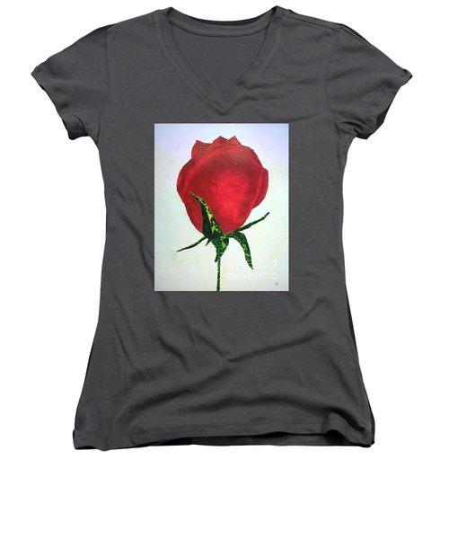 Rosebud Of Beaverlac Women's V-Neck T-Shirt (Junior Cut) by Lynda Cookson