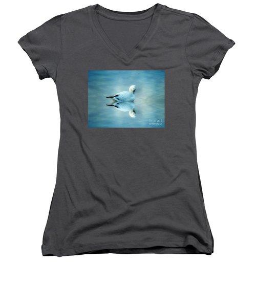 Ross Goose Women's V-Neck T-Shirt