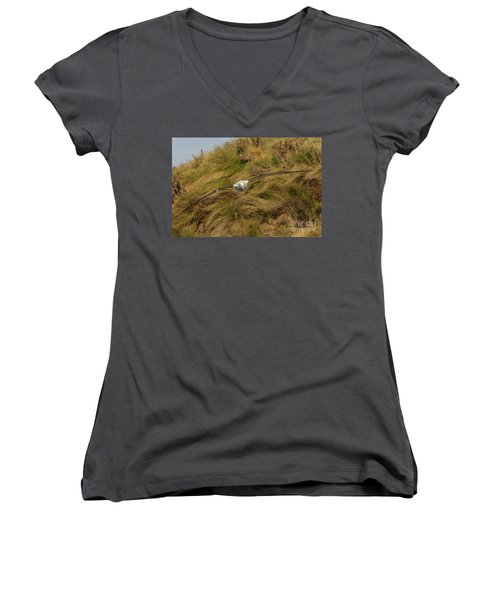 Royal Albatross 2 Women's V-Neck T-Shirt (Junior Cut) by Werner Padarin