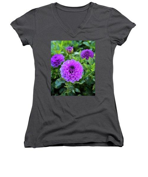 Royal Dahlia Delight Women's V-Neck T-Shirt