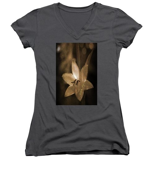 Rustic Bloom Women's V-Neck T-Shirt
