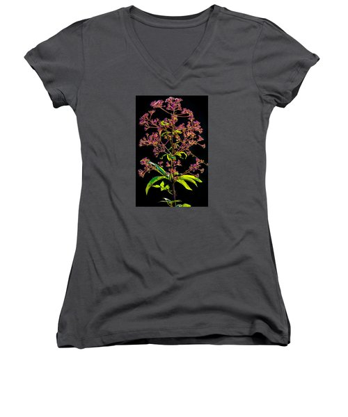 Women's V-Neck T-Shirt (Junior Cut) featuring the photograph Rustic Weed by Brian Stevens