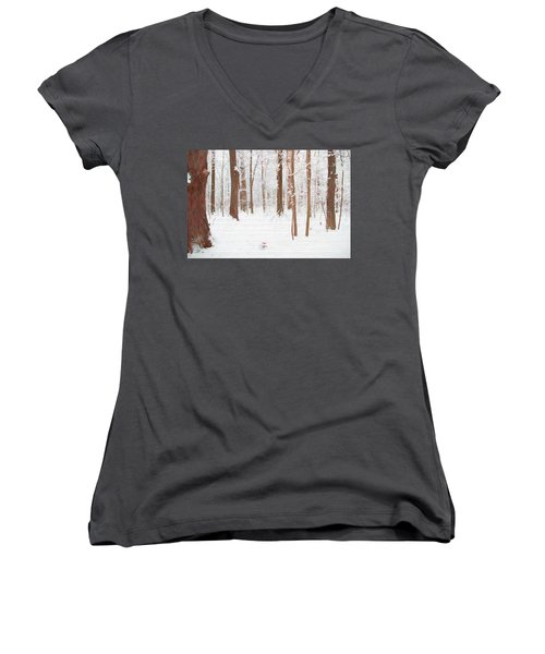 Rustic Winter Forest Women's V-Neck T-Shirt (Junior Cut) by Dan Sproul
