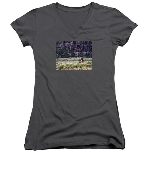 Safe In The Valley Women's V-Neck T-Shirt (Junior Cut) by Elizabeth Eldridge