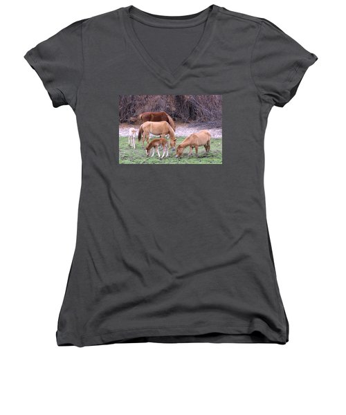 Salt River Wild Horses In Winter Women's V-Neck