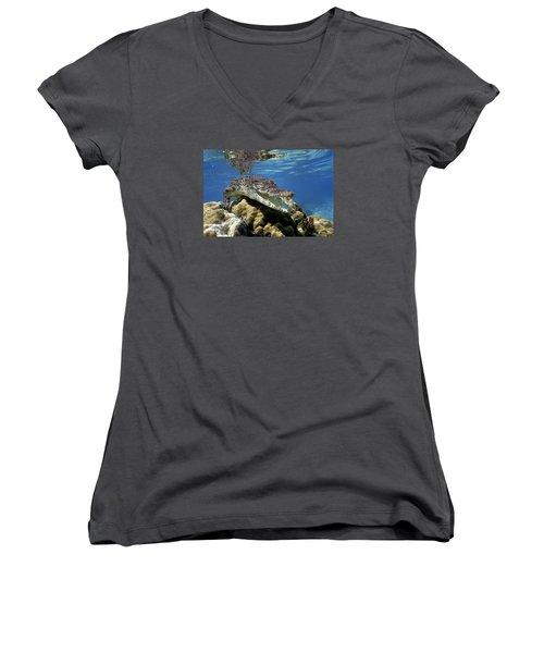 Saltwater Crocodile Smile Women's V-Neck T-Shirt (Junior Cut) by Mike Parry