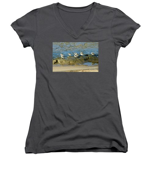 Sanderling Gather Women's V-Neck (Athletic Fit)