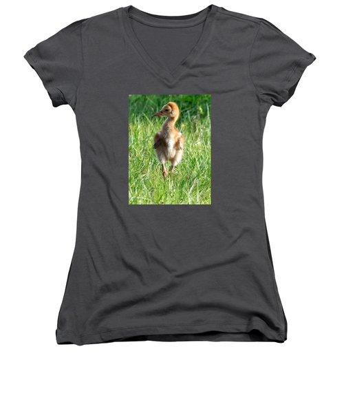 Sandhill Crane Chick 085  Women's V-Neck T-Shirt (Junior Cut) by Chris Mercer