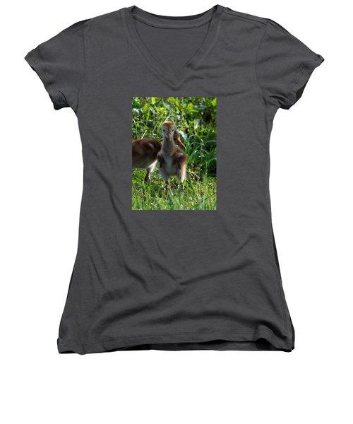 Sandhill Crane Chick 086  Women's V-Neck T-Shirt (Junior Cut) by Chris Mercer
