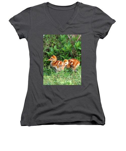 Sandhill Crane Chicks 002 Women's V-Neck T-Shirt (Junior Cut) by Chris Mercer