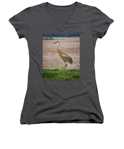 Women's V-Neck T-Shirt featuring the photograph Sandhill Crane In Profile by Bill Pevlor