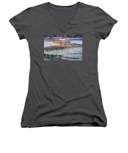 Sandhill Crane Platte River - Textured Women's V-Neck