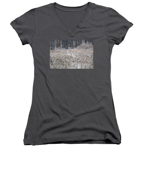 Sandhill Cranes 1171 Women's V-Neck T-Shirt (Junior Cut) by Michael Peychich