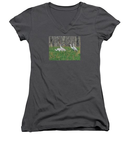 Sandhill Cranes Women's V-Neck T-Shirt