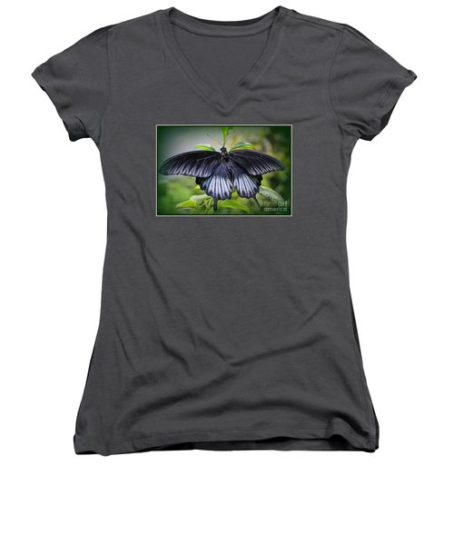 Sapphire Blue Swallowtail Butterfly Women's V-Neck (Athletic Fit)