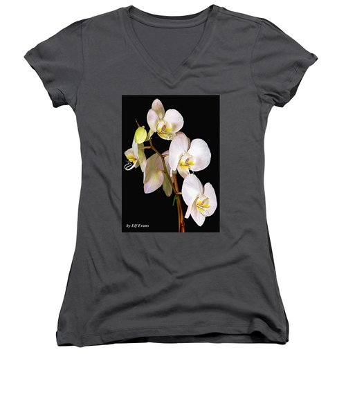 Women's V-Neck T-Shirt featuring the photograph Sara Ella by Elf Evans
