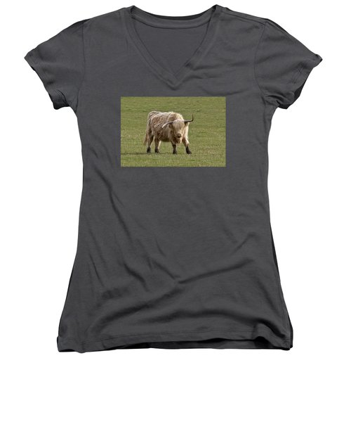 Sauvie Island Cow Women's V-Neck