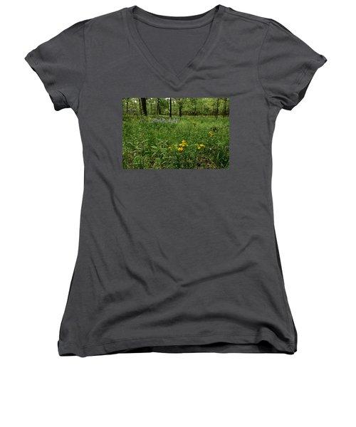 Savanna Women's V-Neck T-Shirt