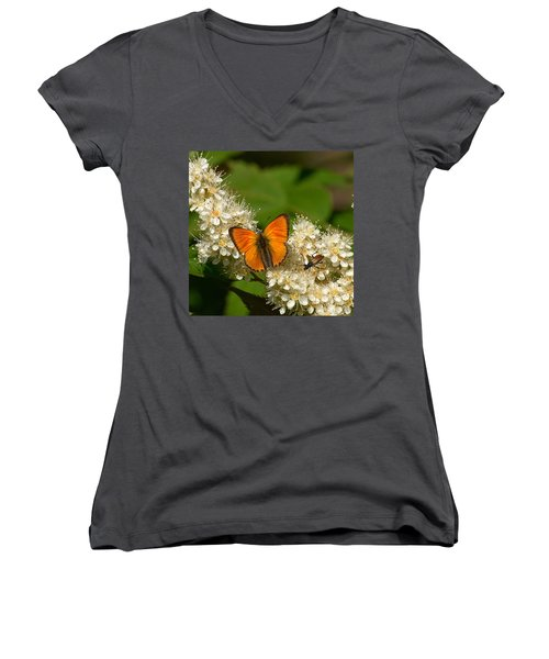 Women's V-Neck T-Shirt (Junior Cut) featuring the photograph Scarce Copper 2 by Jouko Lehto